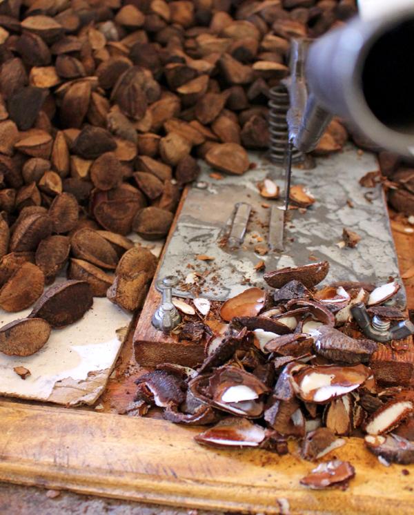 A beleza das castanhas do Pará no Ver-o-Peso