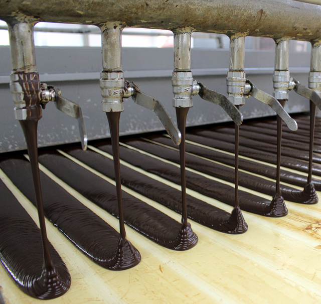 liquor de cacau: amêndoa fermentada, seca, moída, torrada e processada até se obter uma massa espessa quando quente, composta por manteiga de cacau e materiais secos de cacau, posteriormente separados por prensagem.