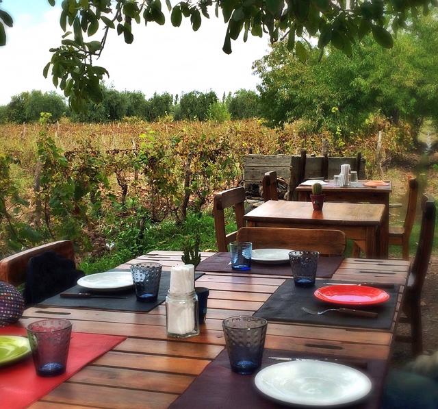 Almoço entre os vinhedor orgânicos da Cecchin: não saia de Mendoza sem fazer esse programa