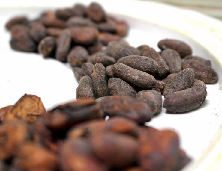 A diferença de cor, tamanho e texturas dos vários tipos de cacau - que produzirão chocolates bem distintos entre si