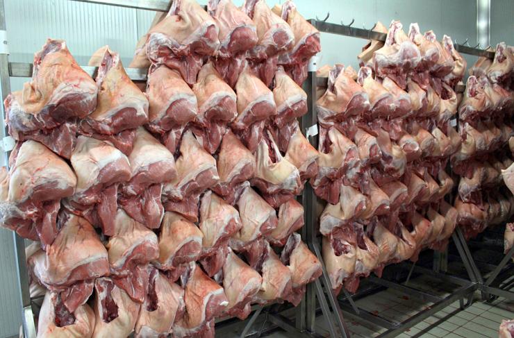 O início do processo de produção do presunto cozido: os pernis suínos chegam ao salumifício e vão para a desossa