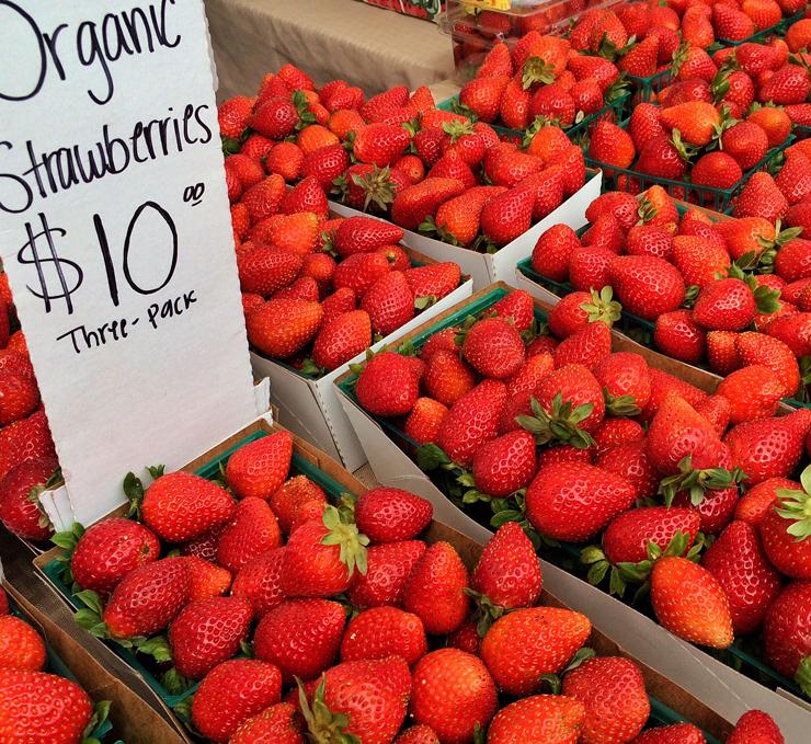 Toda a beleza e delícia das frutas orgânicas da estação.