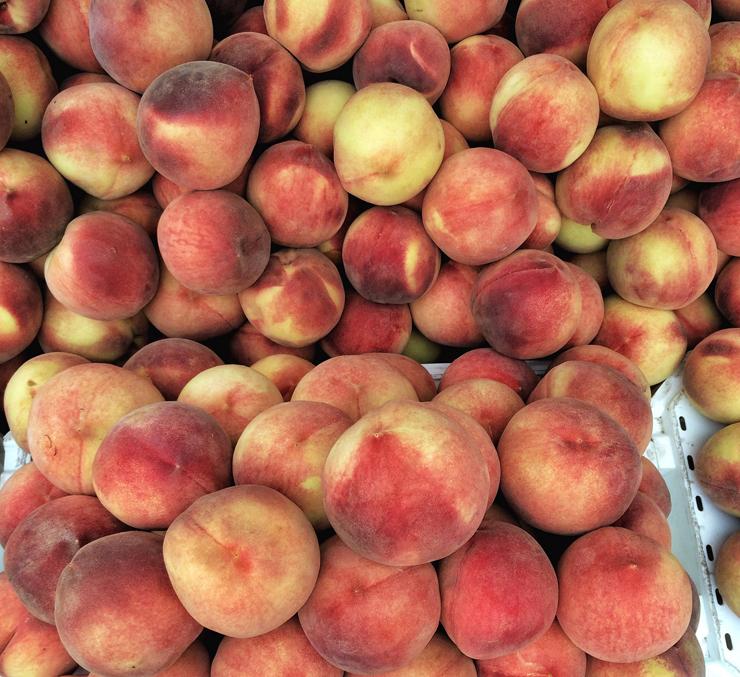 Os pêssegos mais suculentos e doces que já comi - e orgânicos