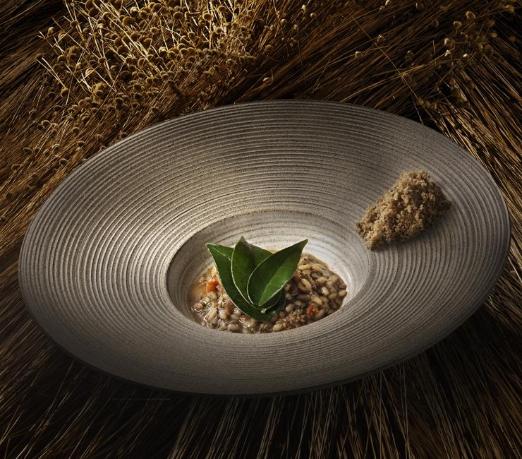 Arroz de pequi com galinha d'Angola, farofa de baru e ora-pro-nóbis - Bioma: Cerrado