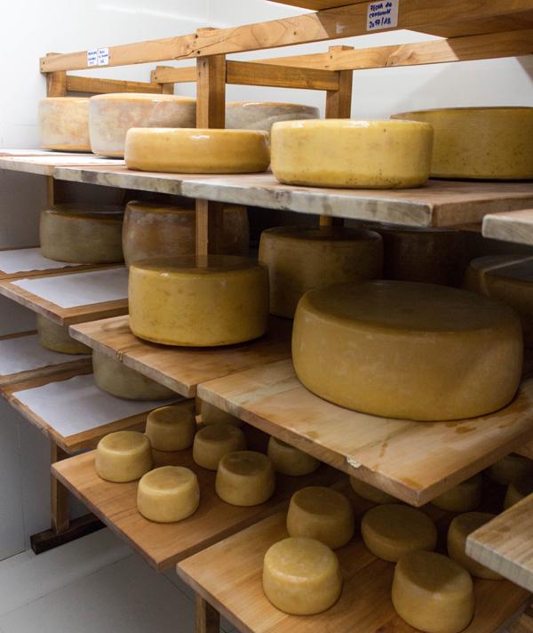 A bela variedade de queijos, produzidos produzidos por mestre-queijeiro suíço, no hotel Vira Vira