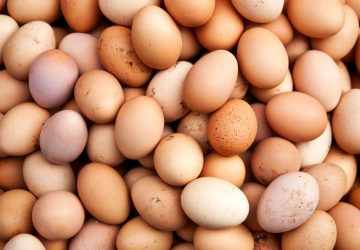 eggs-promo-1